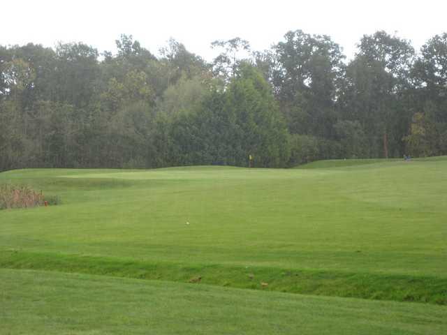 Blue Mountain Golf Club, 5th green