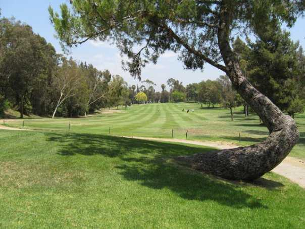 A view of the 4th green at Birch Hills Golf Course