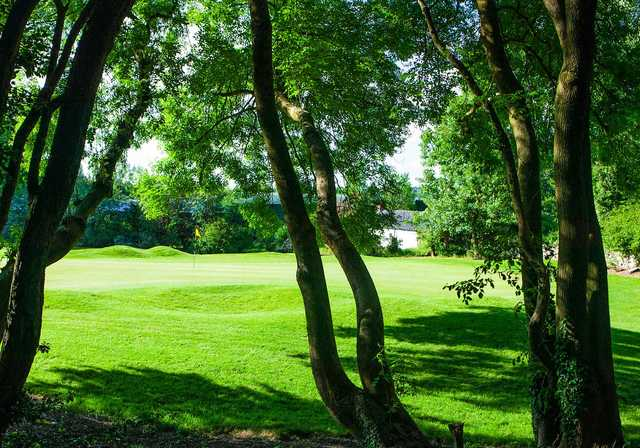 A sunny day view of a green at Cork Golf Club