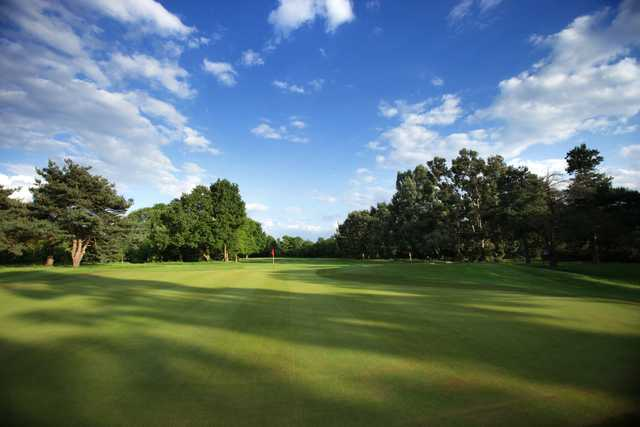 A sunny day view of a green at Fulwell Golf Club