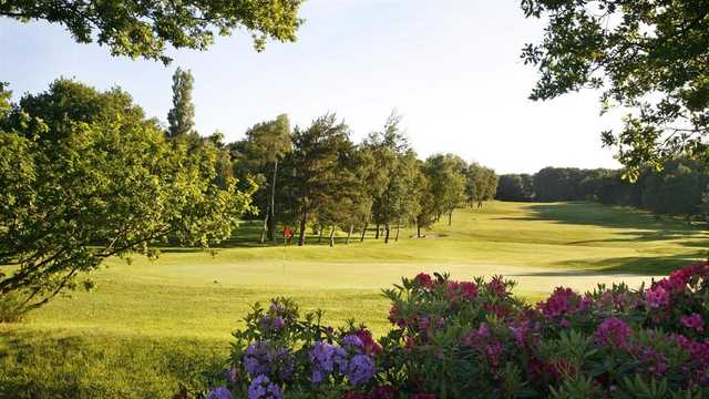 A sunny day view from Harrogate Golf Club