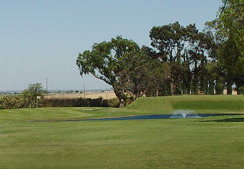 A view of hole #14 at Tracy Golf & Country Club