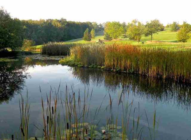Water hazard at Chiddingfold Golf Club