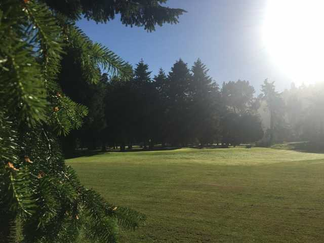 A sunny day view of green #7 at Kings Valley Golf Course.