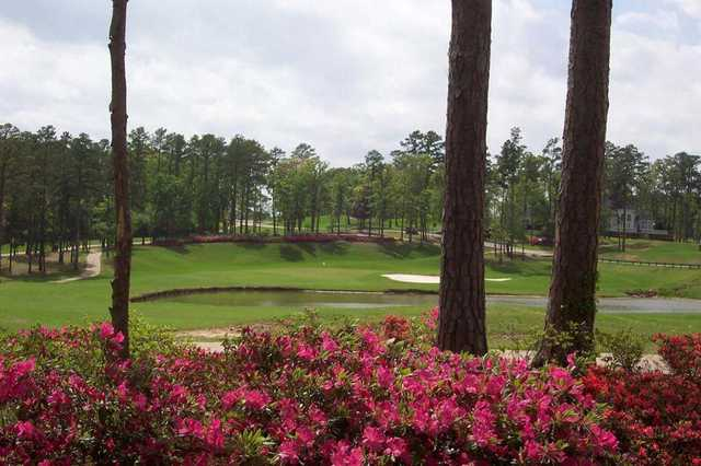 A view of a green with water coming into play at Eagle's Bluff Country Club.