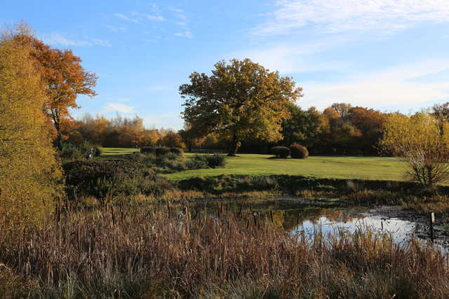 A view from Woodford Golf Club