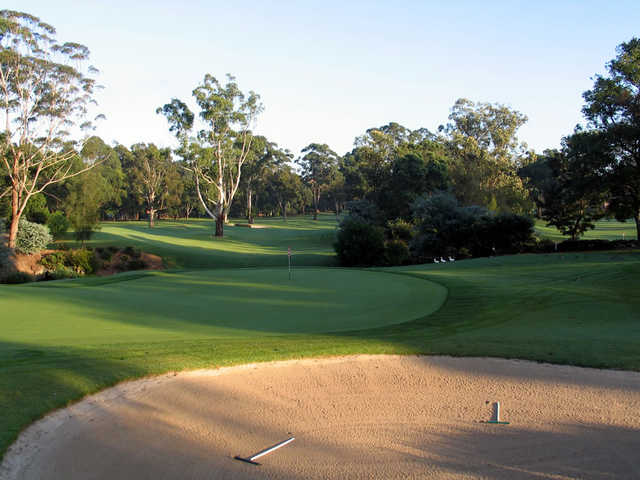 View of the 10th green at Ryde-Parramatta Golf Club