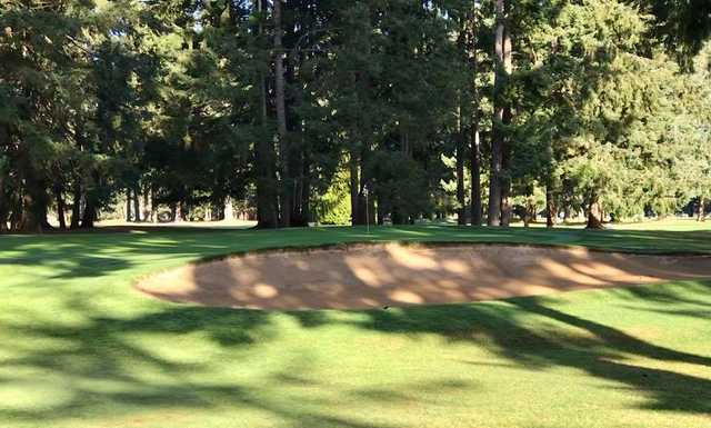 A sunny day view of a hole at Lake Spanaway Golf Course.