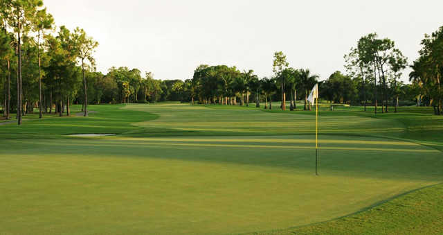 A view of a green at Quail Creek Country Club.