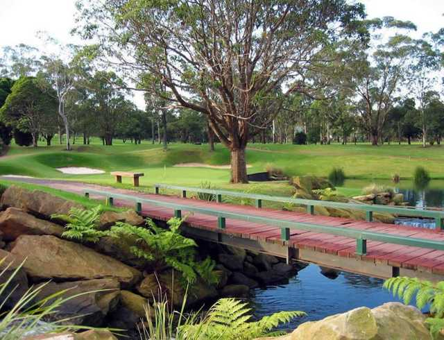 View of the 13th green at Ryde-Parramatta Golf Club