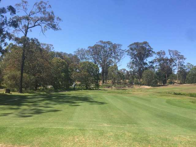 View of a green at Pine Rivers Golf Club
