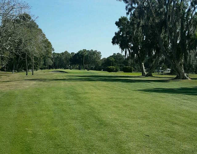 A view from Village Green Golf Club