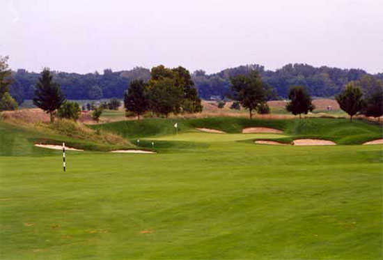A view of green #14 surrounded by bunkers at Cooks Creek Golf Club
