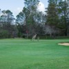 View of a green at Barossa Valley Golf Club Nuriootpa