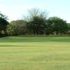 A view from fairway at Ryde Golf Club