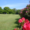 A view from Bedlingtonshire Golf Club