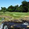 Water hazard as seen at Manor House Golf Club's #18