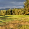A sunny day view of a green at West Linton Golf Club