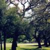 A view from Killian Greens Golf Club
