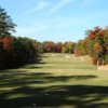 A view from a tee with a narrow path on the right at St. Andrews Country Club
