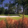 A view of a green guarded by a bunker at Carter Plantation
