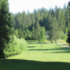 A view from a tee at Mace Meadow Golf & Country Club