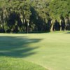 A sunny day view of a green from Palatka Golf Club