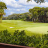 A view of a green from Long Point at Amelia Island Club