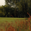 A view of a green at South Herts Golf Club
