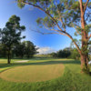 A view from a tee at Bungool Course from Riverside Oaks Golf Club