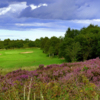 A view from 15th at South Moor GC
