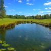 A view over a pond at Roe Park Golf Club