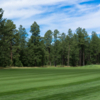 A view of a fairway at White Mountain Country Club.