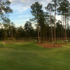 A view from The Playgrounds at Bluejack National.