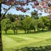View of a green at Shandon Park Golf Club