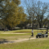 A fall day view of a green at Webb Park Golf Course.