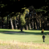A sunny view of a hole at Gleneagles GC at McLaren Park