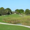 A view from The Bridges at Springtree Golf Club.