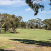 A view of the 10th hole at Mount Martha Public Golf Course.