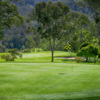 View from a green at Nambour Golf Club