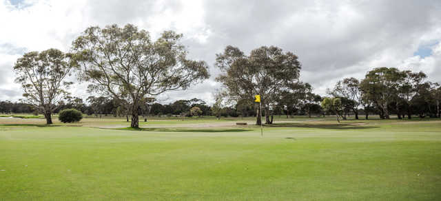 A view of a green with scattered trees in background at Barwon Valley Golf Club.