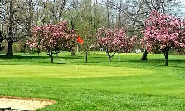 A view of a green at Elms Country Club.
