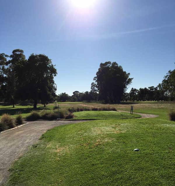 A view from Leeton Golf Club