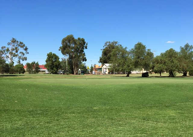 A sunny day view of a hole at Leeton Golf Club.