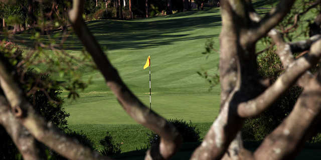 View of the 11th hole from Pennant Hills Golf Club