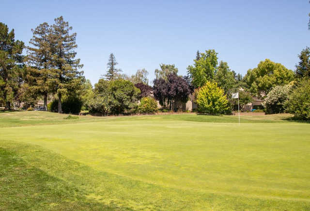A sunny day view of a hole at Pruneridge Golf Course.