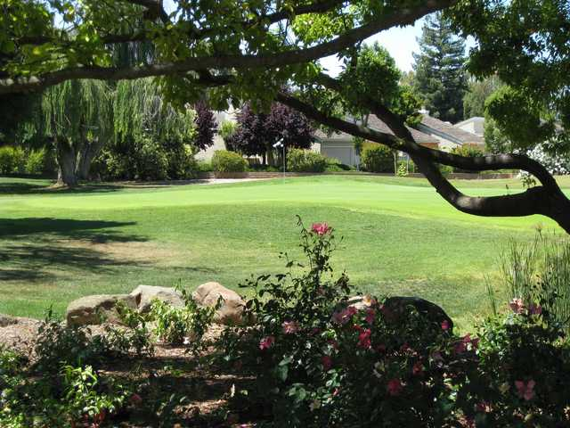 A view of a green at Pruneridge Golf Course.