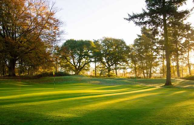 View of a green at Swaffham Golf Club