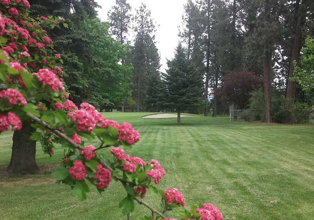 A spring day view from Coeur D'Alene Golf Club.