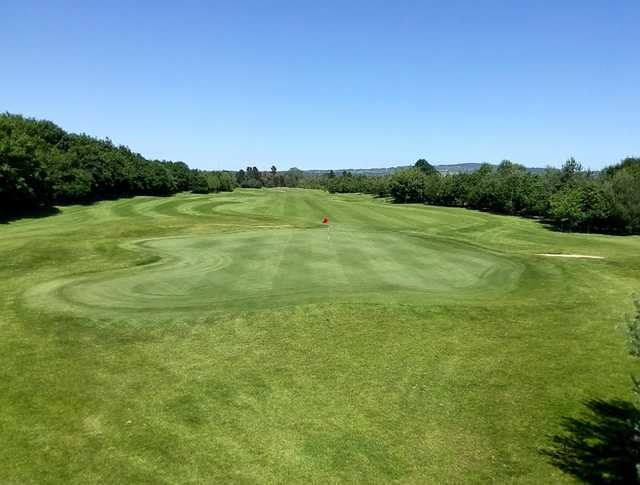 View of a green at Ballyearl Golf and Leisure Centre
